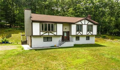 Dutchess County Single Family Home For Sale: 344 Slate Quarry Road
