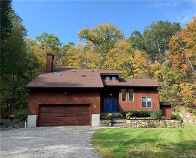 Dutchess County Single Family Home For Sale: 4010 Route 52