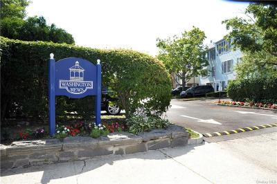 Westchester County Condo/Townhouse For Sale: 33 Washington #33