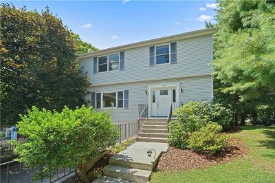 Westchester County Single Family Home For Sale: 29 Shady Lane