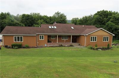 Dutchess County Single Family Home For Sale: 921 W Dover Road