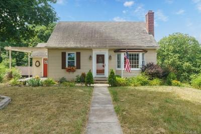 Dutchess County Single Family Home For Sale: 17 Mountain View Road