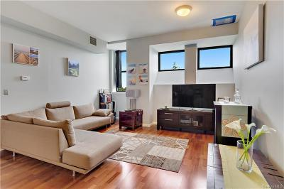 Westchester County Condo/Townhouse For Sale: 55 McKinley Avenue #D3-11