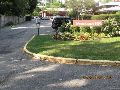 Westchester County Condo/Townhouse For Sale: 209 Old Country Road