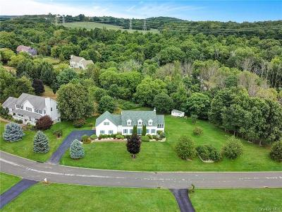Dutchess County Single Family Home For Sale: 8 Patricia Drive