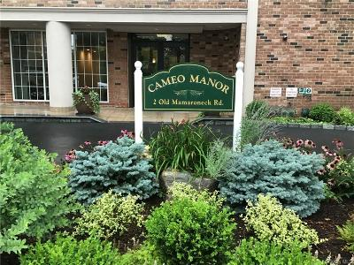 Westchester County Rental For Rent: 2 Old Mamaroneck Road #4I