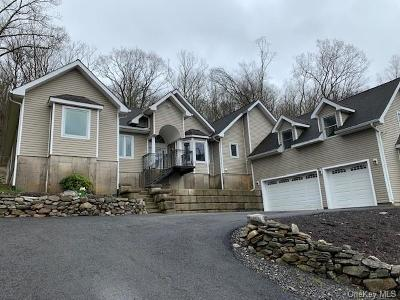 Dutchess County Single Family Home For Sale: 146 Woodmont Road