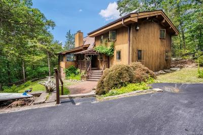 Putnam County Single Family Home For Sale: 2787 Route 9