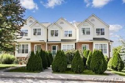 Dutchess County Single Family Home For Sale: 56 Schenck Avenue