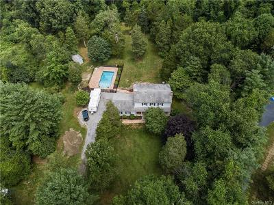 Dutchess County Single Family Home For Sale: 49 Bronson Road