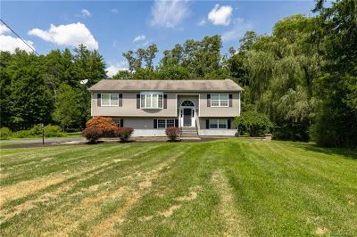 Dutchess County Single Family Home For Sale: 1485 E Noxon Road