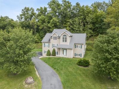 Dutchess County Single Family Home For Sale: 29 Red Hawk Hollow Road