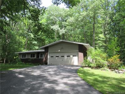 Dutchess County Single Family Home For Sale: 32 Wilkinson Hollow Road
