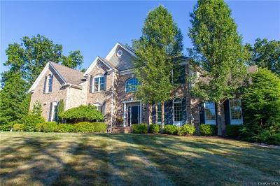 Dutchess County Single Family Home For Sale: 14 Neds Way