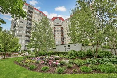 Westchester County Condo/Townhouse For Sale: 10 Stewart Place #10BE
