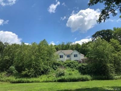 Dutchess County Single Family Home For Sale: 55 Game Farm Road