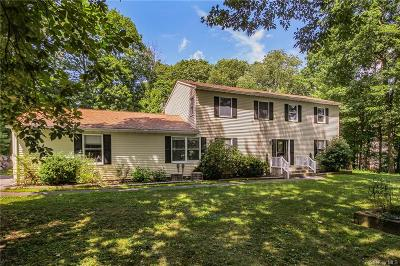 Dutchess County Single Family Home For Sale: 28 Woodcliff Drive