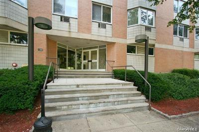 Westchester County Condo/Townhouse For Sale: 14 Nosband Avenue #2E