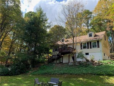 Dutchess County Single Family Home For Sale: 152 Milltown Road