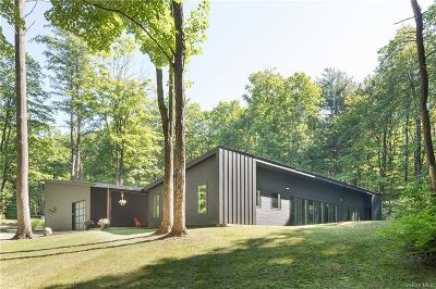 Dutchess County Single Family Home For Sale: 127 Hilltop Road