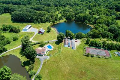 Dutchess County Single Family Home For Sale: Traver Road