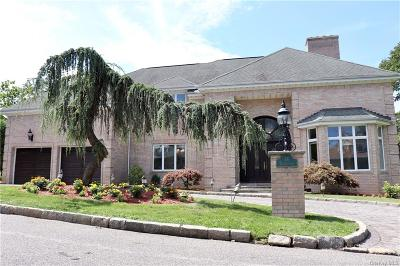 Westchester County Single Family Home For Sale: 14 Potters Lane