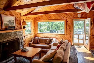 Dutchess County Single Family Home For Sale: 599 Grassy Pond Drive