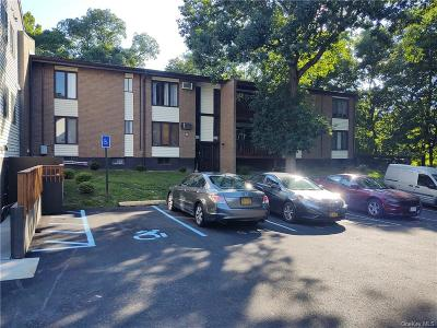 Dutchess County Condo/Townhouse For Sale: 3 Hook Road #64C