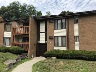 Dutchess County Condo/Townhouse For Sale: 3 Hook Road #14G