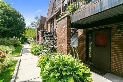 Westchester County Condo/Townhouse For Sale: 492 N Broadway #3