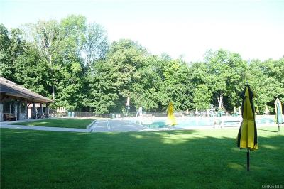 Westchester County Condo/Townhouse For Sale: 17 Wildwood Road