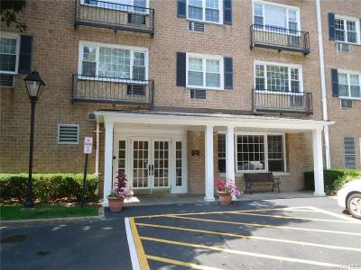 Westchester County Condo/Townhouse For Sale: 2 Consulate Drive #2-N