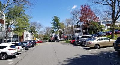 Westchester County Condo/Townhouse For Sale: 513 Colony Drive