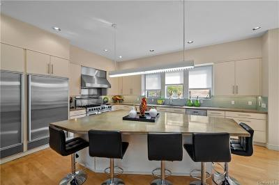 Dutchess County Single Family Home For Sale: 51 Kingwood Park