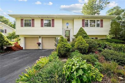 Dutchess County Single Family Home For Sale: 29 Kendell Drive