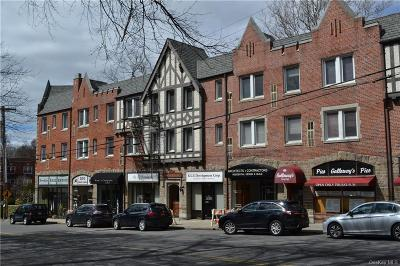 Westchester County Rental For Rent: 69 Harney Road #1B