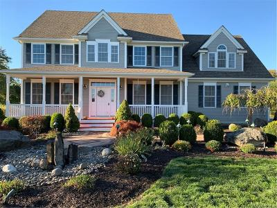 Dutchess County Single Family Home For Sale: 47 South View Court
