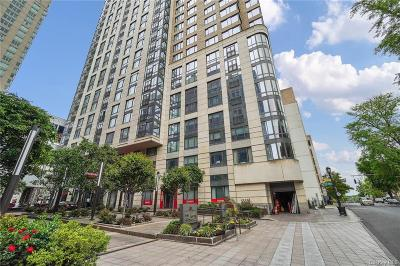 Westchester County Condo/Townhouse For Sale: 10 City Place #24F