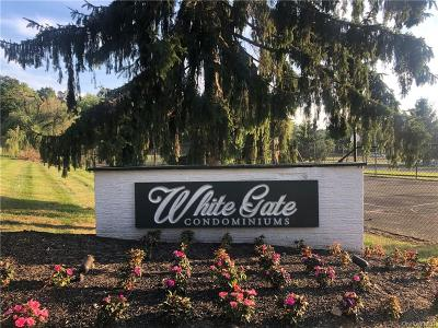 Dutchess County Condo/Townhouse For Sale: 9 White Gate Road #O