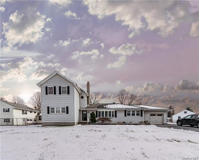 Dutchess County Single Family Home For Sale: 2 Lakeview Road