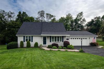 Dutchess County Single Family Home For Sale: 13 Kretch Circle