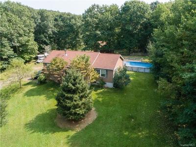 Dutchess County Single Family Home For Sale: 502 Chestnut Ridge Road