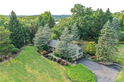 Dutchess County Single Family Home For Sale: 27 Reed Road