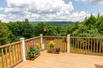 Dutchess County Single Family Home For Sale: 32 Clove Hollow Road