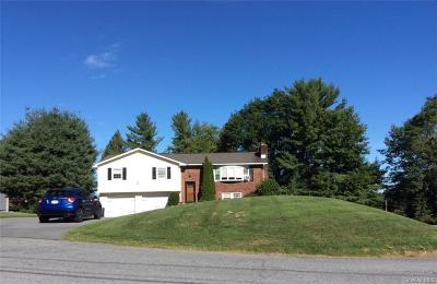 Dutchess County Single Family Home For Sale: 2 Mark Vincent Drive