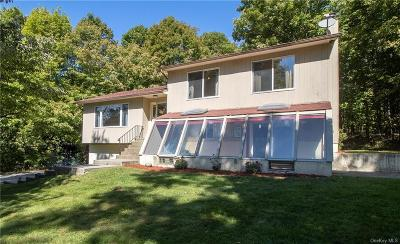 Dutchess County Single Family Home For Sale: 40 Regent Drive