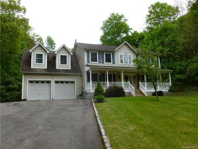 Dutchess County Single Family Home For Sale: 341 Cary Road