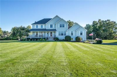 Dutchess County Single Family Home For Sale: 9 Dolly Lane