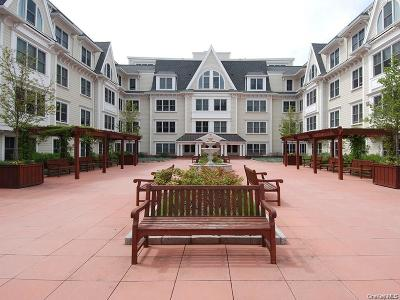 Westchester County Condo/Townhouse For Sale: 225 Stanley Avenue #213