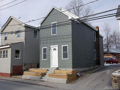 Dutchess County Single Family Home For Sale: 57 Mill Street